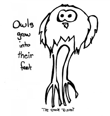 Big Foot Owl