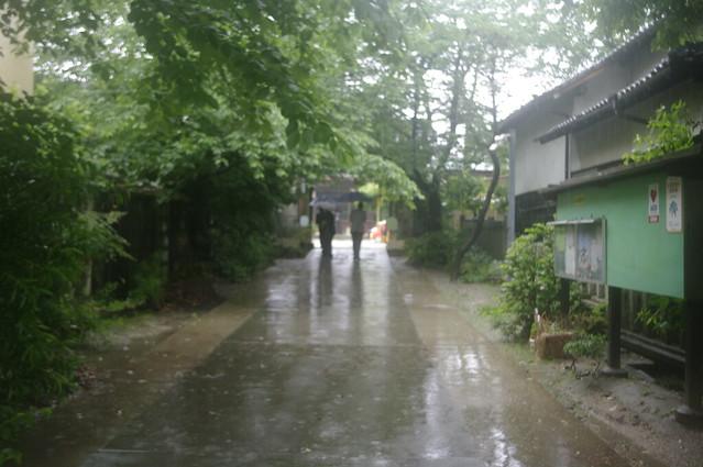 tsuyu::plum rain