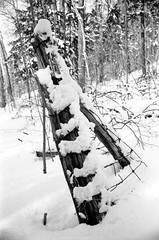 snow_fence_post (herbgraf) Tags: film kodak trix 400 320txp