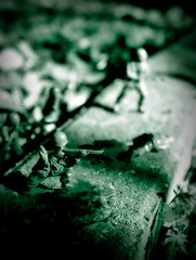 hold your ground (death and gravity) Tags: bw green backyard war dof soldiers tone armymen dutone
