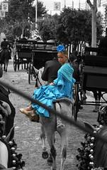 Feria de Sevilla, 2008 (Omar Corrales) Tags: portrait horse caballo sevilla fiesta abril feria seville andalucia flamenco maam sevillana feriadeabril canonef24105mmf4lisusm canoneosdigitalrebelxti canoneos400ddigital omarcorrales