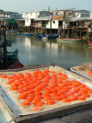 Hong Kong () - Lantau Island ()  Tai O () - Drying Egg Yolks (Hansen's Hikes) Tags: trekking boats island hongkong michael village hiking dolphin egg hong kong hakka  fishingboat hansen tramping fishingvillage lantau tanka  ruralliving stilthouse udflugt  michaelhansen hansenshikes vandreture