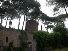 SANY0091 (Vanbest) Tags: italy rome emile romagna