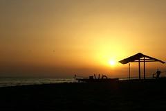 the most original shot ever seen (Jighen) Tags: sunset sea italy sun seagulls beach backlight italia tramonto mare sole ostia spiaggia gabbiani lido controluce lidodiostia ostialido
