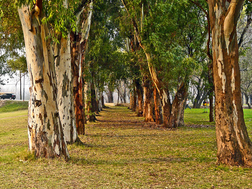 Le Parc San Martin à San Antonio de Areco