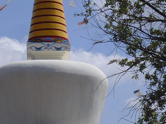 DAG SHANG KAGYU (binsen) Tags: huesca pirineos ordesa monteperdido