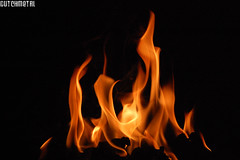 Fire, flames, slowly burning (dutchmetal) Tags: fire flames burn brand vuur vlammen