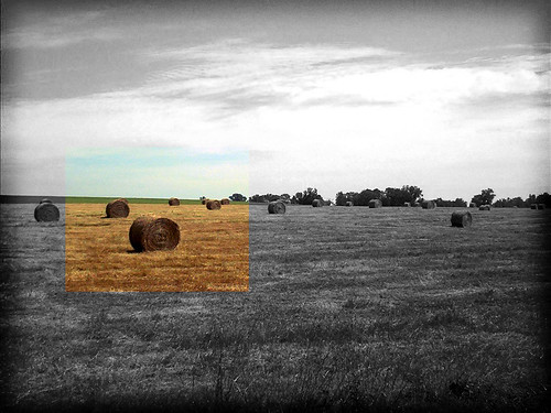 just some colored haybales