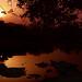 Benin - River Sunrise