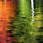 fluid jewels of Autumn