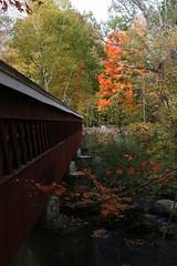 2008_10_13_brookline-nh_06 (dsearls) Tags: footbridge coveredbridge brookline bikeway brooklinenh potanipo nissitissit anthropocene nissitissitriver granitetownrailtrail 20081013 potanipopond