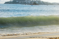 las olas del Yeloow Point (saf project) Tags: mexico skimboarding