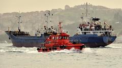 """Pilot 75"" passing ""F. Coktug"", Bosphorus, Istanbul, Turkey, 22 April 2008 (Ivan S. Abrams) Tags: arizona ivan abrams smörgåsbord tucsonarizona 12608 onlythebestare ivansabrams trainplanepro pimacountyarizona safyan arizonabar arizonaphotographers ivanabrams cochisecountyarizona gettyimagesandtheflickrcollection ivansafyanabrams arizonalawyers statebarofarizona californialawyers copyrightivansafyanabrams2009allrightsreservedunauthorizeduseprohibitedbylawpropertyofivansafyanabrams unauthorizeduseconstitutestheft thisphotographwasmadebyivansafyanabramswhoretainsallrightstheretoc2009ivansafyanabrams abramsandmcdanielinternationallawandeconomicdiplomacy ivansabramsarizonaattorney ivansabramsbauniversityofpittsburghjduniversityofpittsburghllmuniversityofarizonainternationallawyer"
