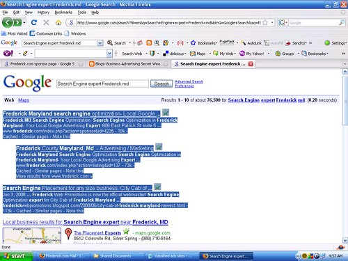 search engine experts screen shot Frederick MD