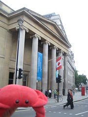 Laura & Claude in London (35) (chicgeekuk) Tags: red laura animal toy crab plush claw abroad stuffedanimal seafood claude crabs crustacean claws kishimoto travellingtoys travellingtoy laurakishimoto laurakishimotoca claudeabroad