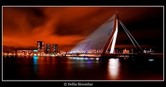 Erasmus Bridge - Rotterdam (DolliaSH) Tags: canon dollias efs eos hdr 50d 1020mm erasmusbridge nightshot tonecompressor rotterdam photomatix brug bridge ultrawide qualitypixels flickrlovers worldtrekker ih colorphotoaward photoshop cs3 erasmusbrug dollia sheombar kopvanzuid night light lights city color colors le longexposure noche nacht stad nuit notte noch nachtopname reflections haven harbour holland nederland thenetherlands zuidholland southholland europe photo photos foto photography architecture water river maas urban most ponte pont brcke brucke puente