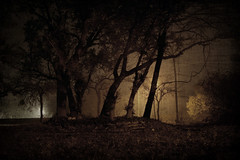 Nightmare. (The Vision Beautiful) Tags: longexposure trees fog night dark shadows silhouettes eerie creepy slowshutter lonely nightmare
