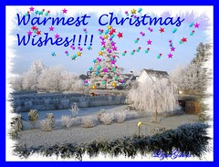 Warmest Christmas Wishes!!