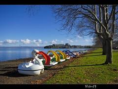 Capodimonte (sirVictor59) Tags: italy lake topf25 lago topf50 nikon italia 1001nights colori viterbo bolsena lazio 10mm taged abigfave aplusphoto goldstaraward sirvictor59