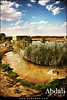 Abdali City (Hamad Al-meer) Tags: city sky cloud house tree water grass rock canon landscape eos view farm hd kuwait hamad 30d حمد الكويت منظر طبيعي كويت مزرعة abdali almeer 5photosaday العبدلي aplusphoto المير hamadhd hamadhdcom wwwhamadhdcom flickrlovers