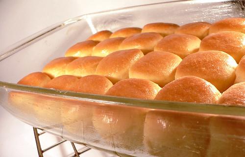 Wachauer Buchteln, frisch aus dem Ofen