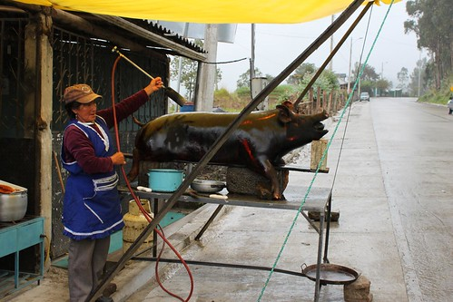 One way to cook a pig