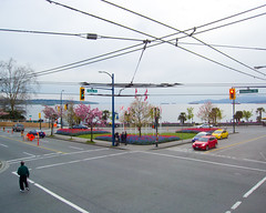Pallette (rbrtwhite) Tags: street canada beach nature vancouver corner spring wire construction downtown colours bc tulips flag cab taxi lounge palm bayside intersection englishbay davie overhead westend denman