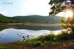 Crnicani Lake, Dojran (samir.demishi) Tags: lake fishing carp ezero dojran ribolov crnicani krapski