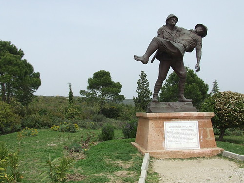 Gallipoli 100