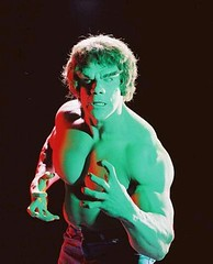Lou Ferrigno as Incredible Hulk