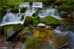 Wet Feet (andrewwdavies) Tags: longexposure trees motion blur cold water leaves wales geotagged waterfall moss rocks country pebbles breconbeacons explore slowshutter flipflops flowing powys circularpolariser canonefs1022mmf3545usm rhaeadr wetfeet ystradfellte sorefeet giap smoothwater afonmellte waterfallwalk explored rhaeadrau valeofneath canoneos40d andrewwilliamdavies achingbody geo:lat=51783347 geo:lon=3562231