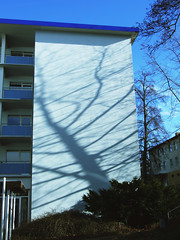 Natures Shadow (flickrolf) Tags: trip travel light color colour home me germany europe day fuji time space finepix now miracles farbe couleur blackforrest enz enztal flickrolf paintingwithspace