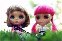 New friends (zvaella) Tags: happy harbor heaven becky penny blythe haha ih ichigo