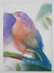 The Clay-Colored Robin (2008) by Stephen B Whatley (Stephen B Whatley) Tags: usa bird art robin leaves birds mexico artist branch texas drawing pastel expressionism sensational ornithology costrica impression thrush turdidae claycoloredrobin infinestyle stephenbwhatley