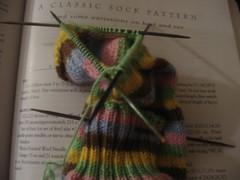 Gelato Sock