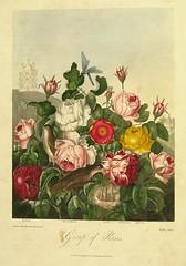 Templo de Flora