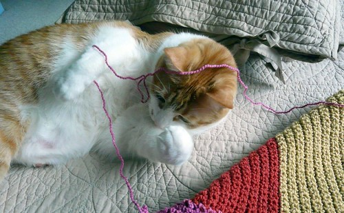 Tangled Up In Pink