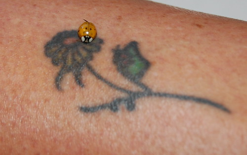 Ladybug on tattoo flower