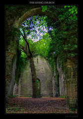 The Living Church - Somerton, Norfolk (Jon Frosdick) Tags: wood uk england tree church norfolk ruin hdr somerton canonefs1755mmf28isusm canoneos40d