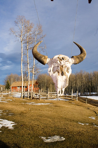 Homeplace Ranch in Alberta, Canada by Travel Alberta Canada, on Flickr