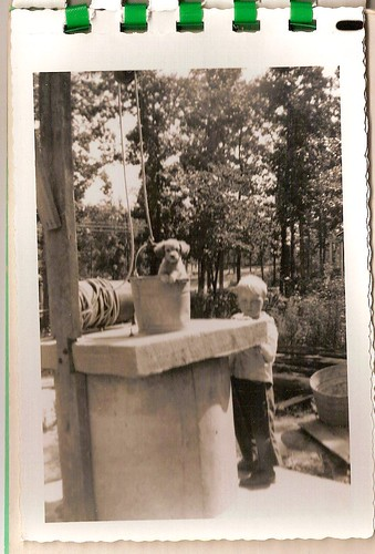 a dog, a boy and a well