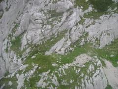 DSC02094 (lau fosti) Tags: europe eslovenia