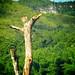 Thailand Kanchanaburi JUL 2008 79 - Version 2