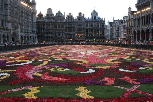 Brussels flowercarpet 2008