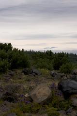 雲から頭を突き出す芦別岳
