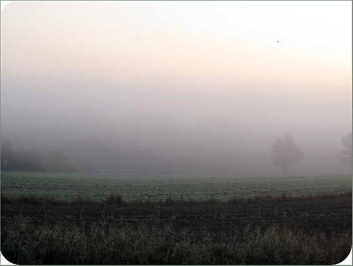 Septembermorgen1
