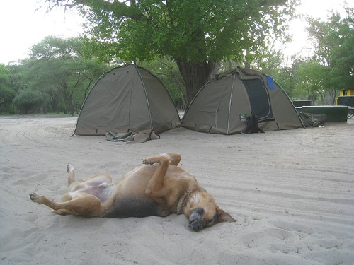 Delta Rain campsite