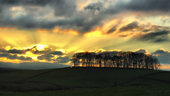 Kirkcowan Dusk (Dan Baillie) Tags: wood trees winter sunset sky sun clouds woodland landscape scotland nikon fields portfolio dumfriesandgalloway puddock wigtownshire danbaillie bailliephotographycouk bailliephotography wigtownshirephotographer dumfriesandgallowayphotography