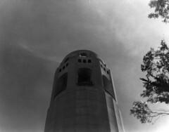 Coit tower (Microcosm 400) Tags: tower bay san francisco minolta coittower touristspot
