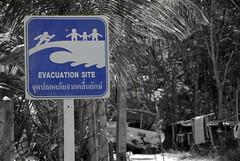 Tsunami Evacuation Way (Xavier Cloitre) Tags: travel beach colors thailand photography nikon asia colours photographie couleurs south playa colores southern tsunami asie d200 fotografia plage krabi thailande xaviercloitre selectivexaviercloitre